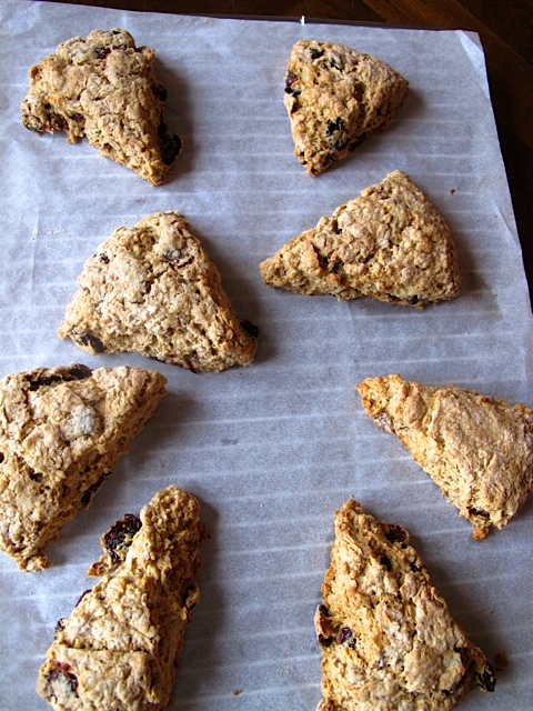 Oatmeal & Fruit Scones