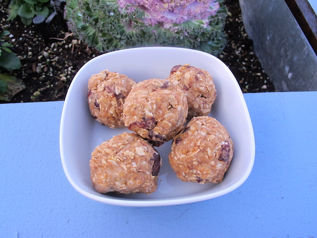 Power Balls! The Perfect Post-Workout Treat.